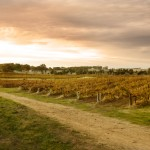 The greedy girl heads off to the Clare Valley Gourmet Weekend