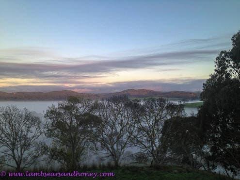 Winter solstice mists