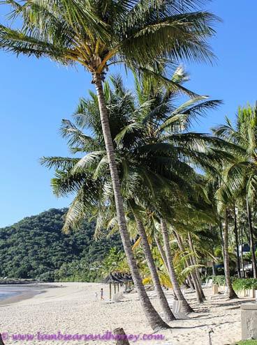 Beach Hamilton Island