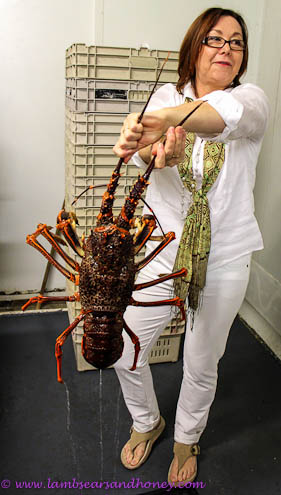 Fergusons Kangaroo Island shellfish lobster