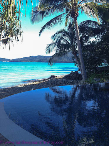 Infinity pool Paradise Bay