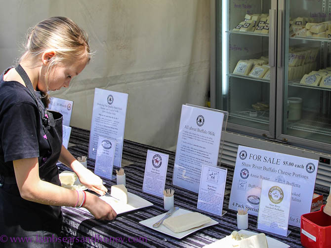 Cheese samples, CheeseFest 2013