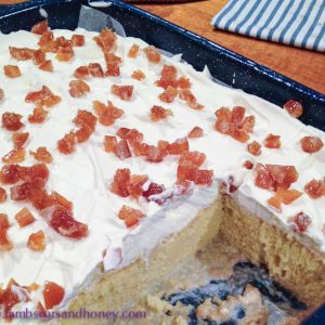 indugent dessert - Tres Leches Cake
