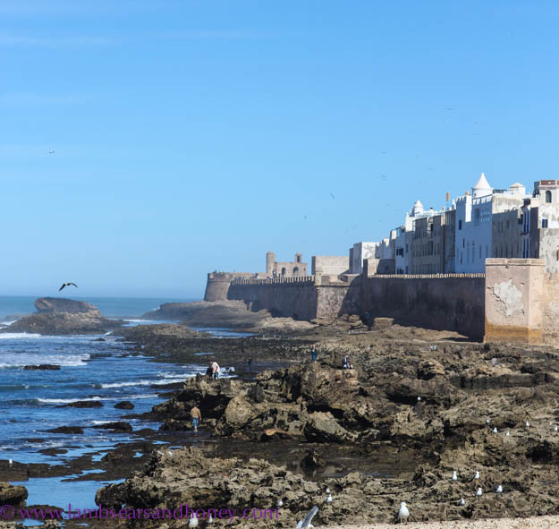 Post image for Wish You Were Here Postcards –  Essaouira in Morocco