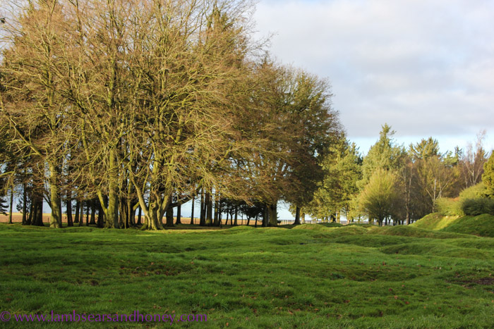 At peace in what was once a bloody battlefield, Newfoundland Memorial Park, the Somme.