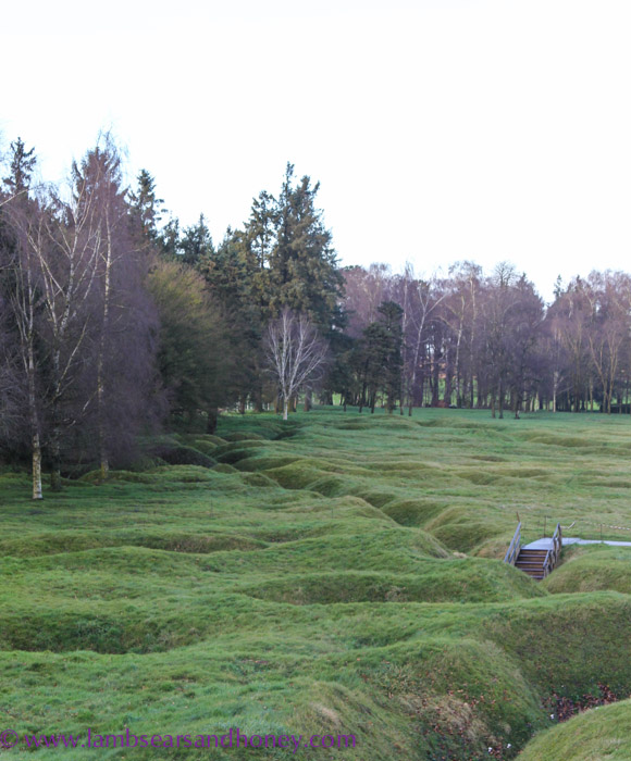 Trenches at Newfoundland Memorial Park, Beaumont Hamel, the Somme.
