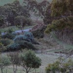 Wish You Were Here Postcards – My Adelaide Hills Back Yard