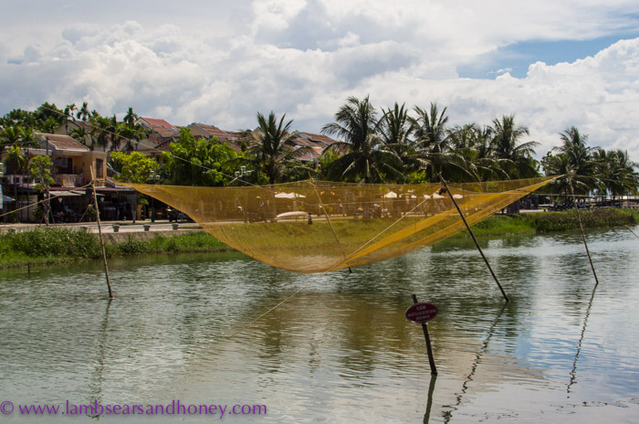 Nets on the river, Hoi an, Vietnam