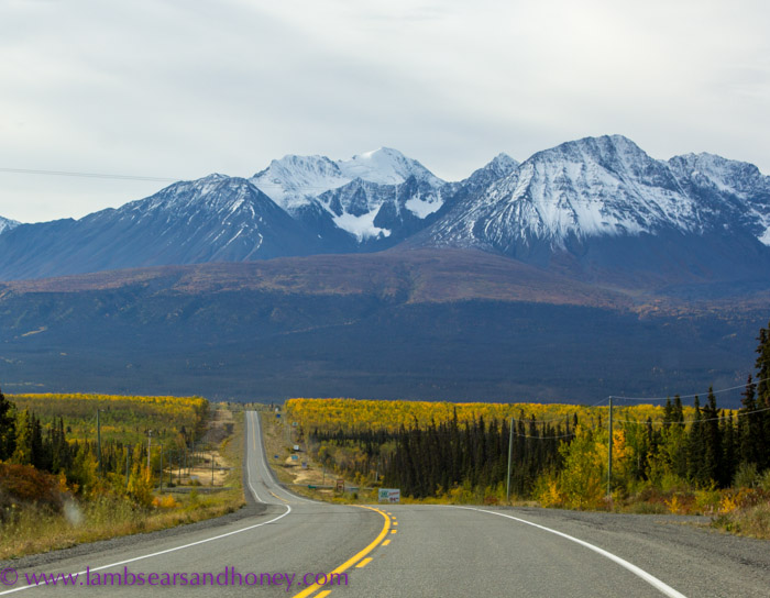 Stunning vistas around each bend on the road to Haines Junction, Yukon Territory.