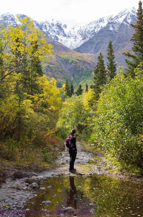 Kathleen lake, Kluane National Park, Yukon