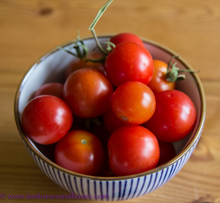 In My Kitchen February 2015 - homegrown tomatoes saved from the Wolfhound