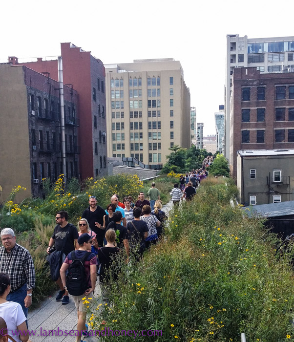 The High Line linear park, NYC