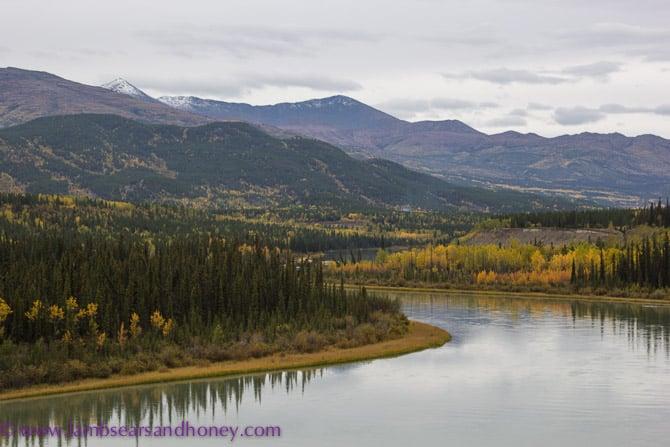 Takhini River - Yukon