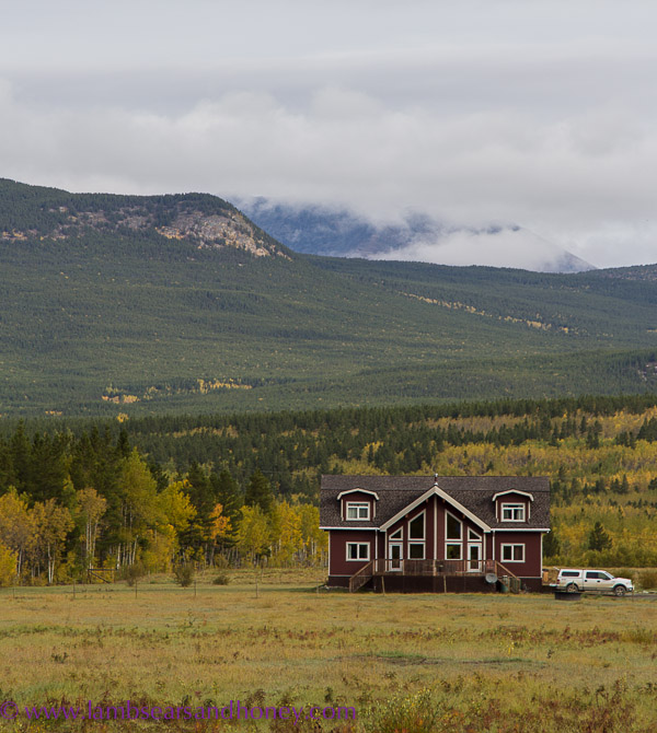 Takhini River Lodge, Whitehorse