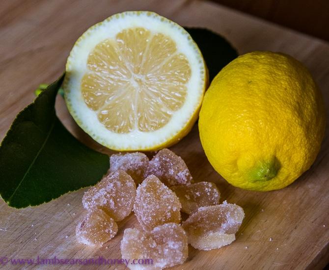 Lemon & crystalised ginger, Lemon Ginger Crisps.