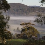 The Adelaide Hills – More From the Kitchen Window