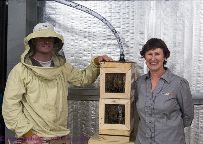 Buzz Honey's Annette Ferris and beekeeper Aaron.