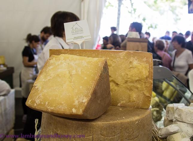 Bra cheese festival