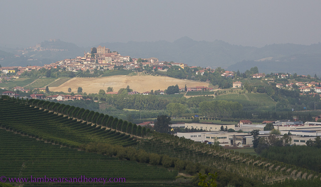 La Morra views, Barolo