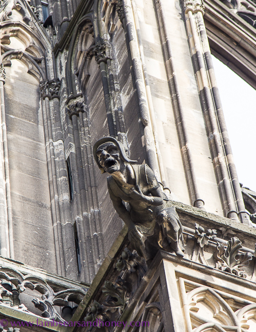 Gargoyle Cologne Cathedral