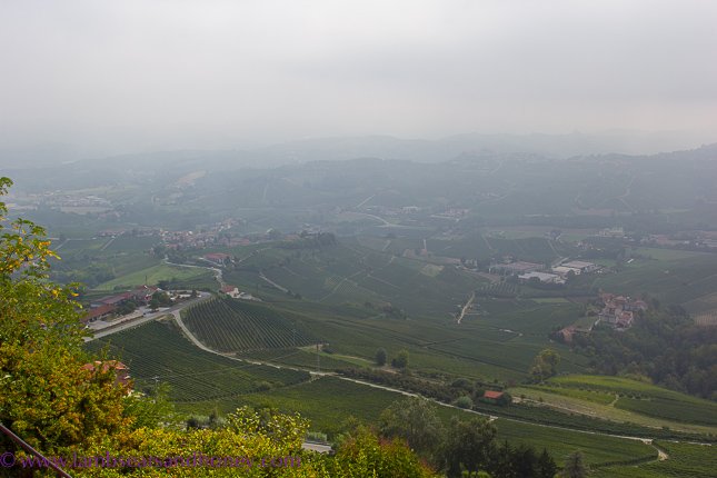 Region of Barolo