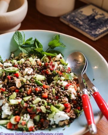 Delicious lentil, walnut and goat cheese salad