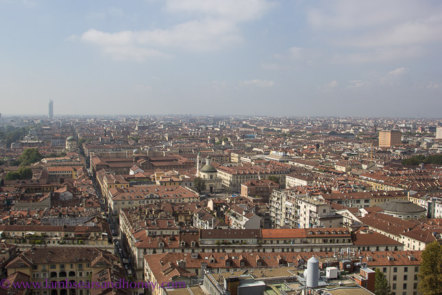 View from the Mole spire, turin