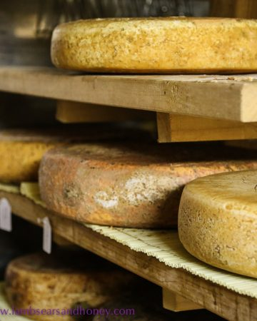 Washed rind cheese, Section 28 cheese