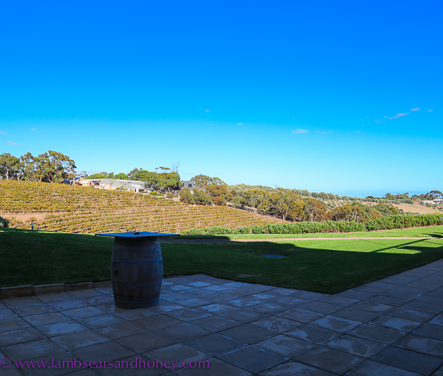 Chapel Hill Winery view