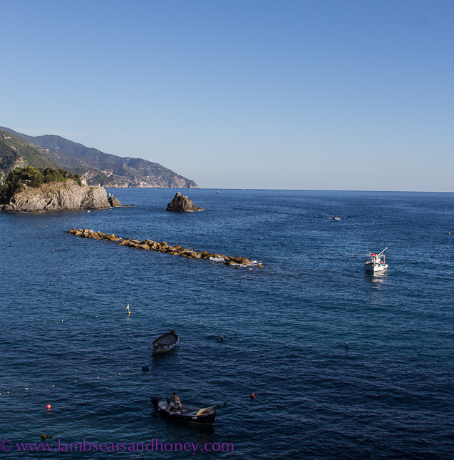 Monterosso fishing boats