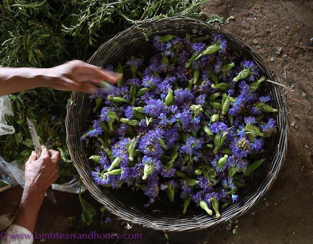 psar leu market flower seller