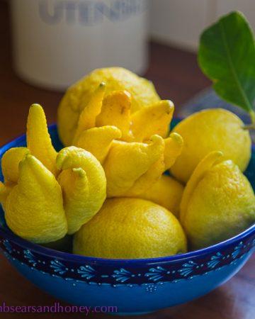 Citrus from my tree In My Kitchen