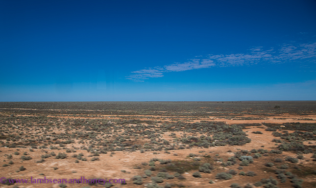 indian pacific view of the Nullarbor