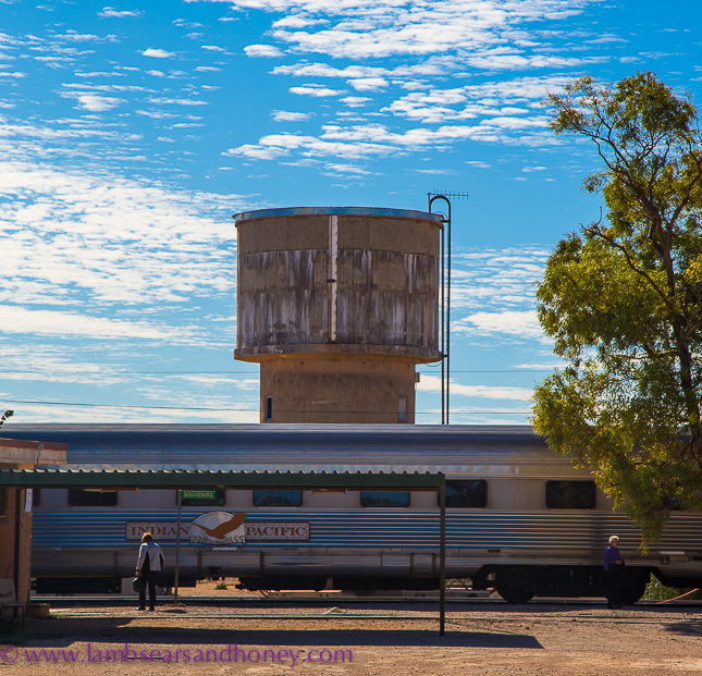 Cook water tower, indian pacific