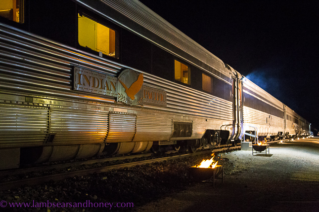 dinner under the stars, Rawlinna Indian Pacific