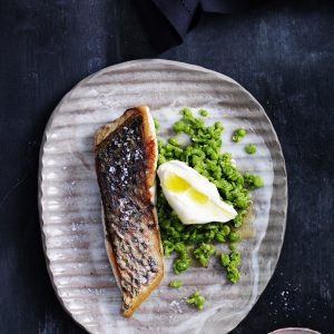 Barramundi, seafood cookbook