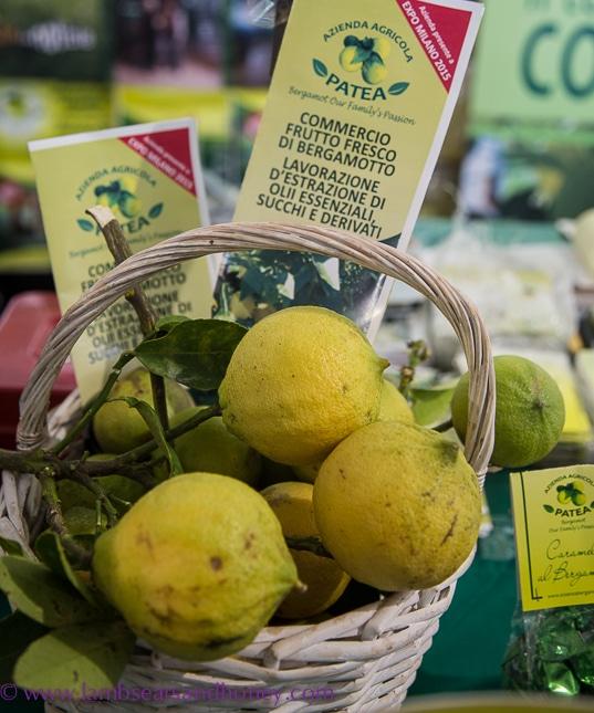 fragrant bergamot, terra madre