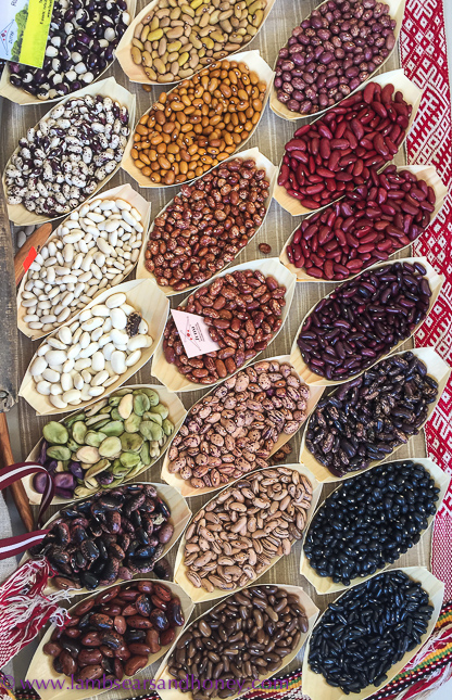various types of beans at terra madre