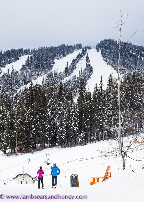 Sun Peaks Resort ski runs