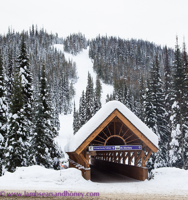 sun peaks resort covered bridge