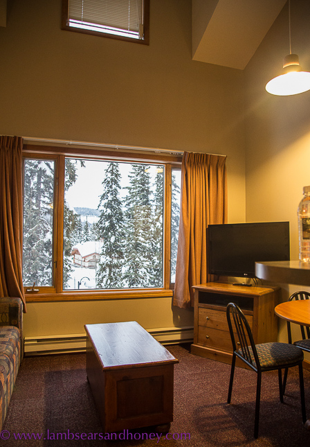 sun peaks resort Cahilty living room