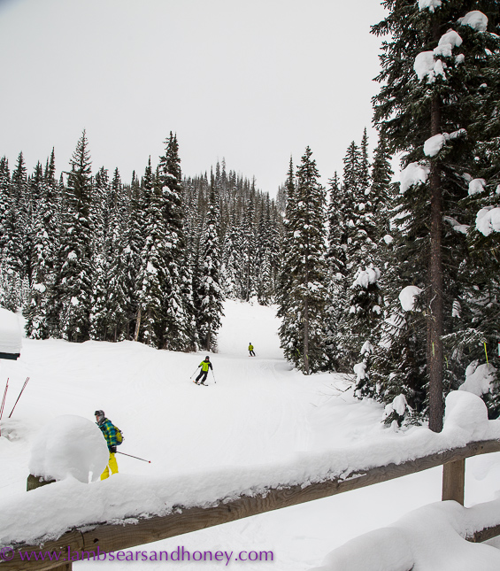 Skiers at sun peaks resort