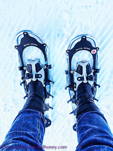 outdoor activities at sun peaks resort snow shoeing