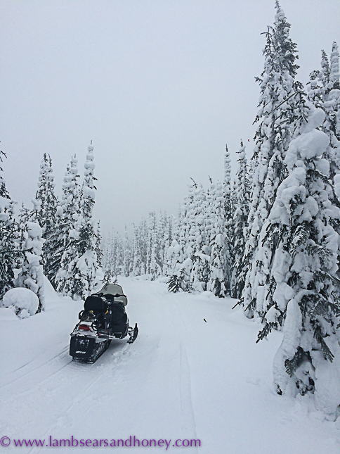 outdoor activities at sun peaks resort - snow mobiling