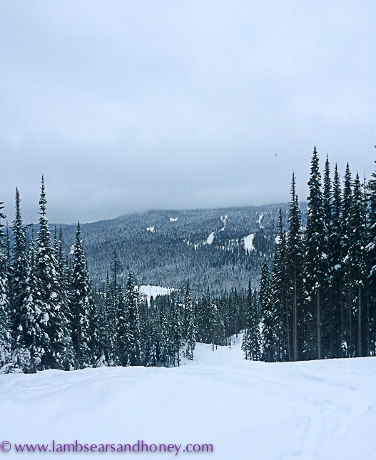 Views from the top, snow mobiling - outdoor activities at sun peaks resort