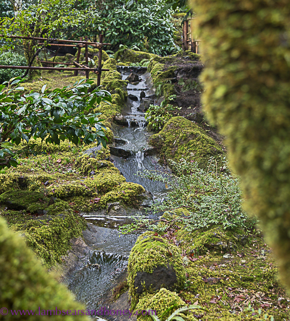butchart gardens on vancouver island, trickling stream