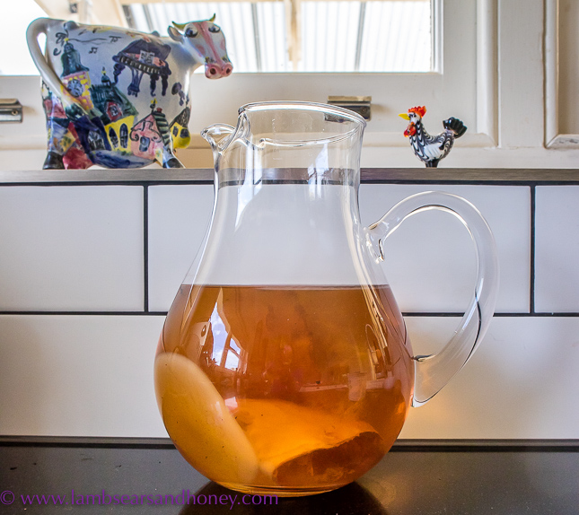 In My Kitchen this month, kombucha