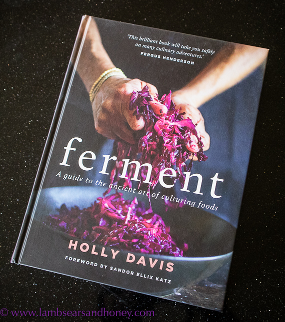 in my kitchen, new book ferment