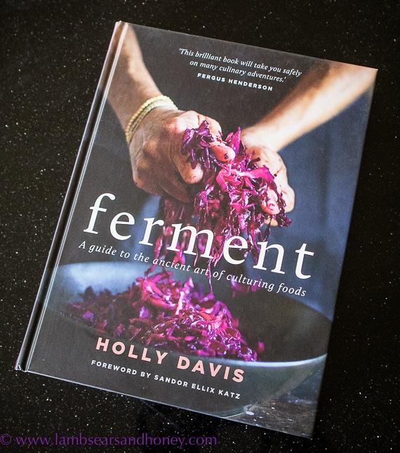 in my kitchen, new book ferment