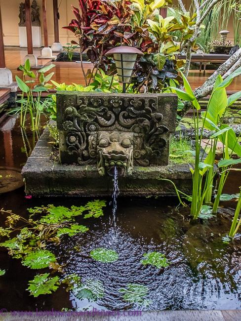 Pond - Luxury accommodation in Bali